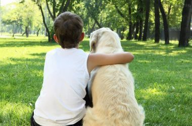 Why Are Dogs A Man's Best Friend?