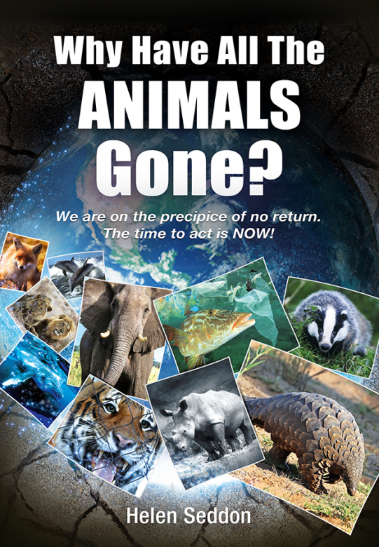 Why Have All The Animals Gone? by Helen Seddon 1