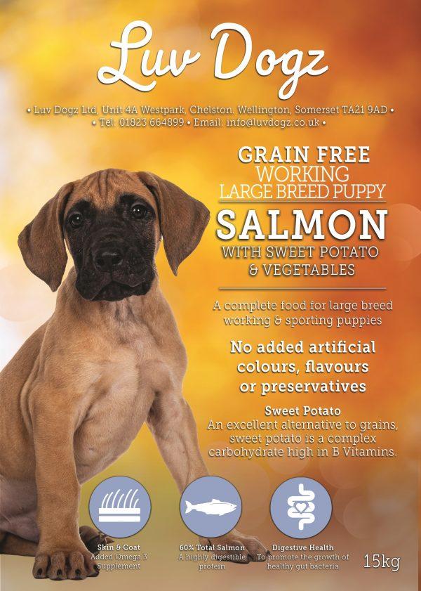 Puppy Junior Large Breed Salmon 50%